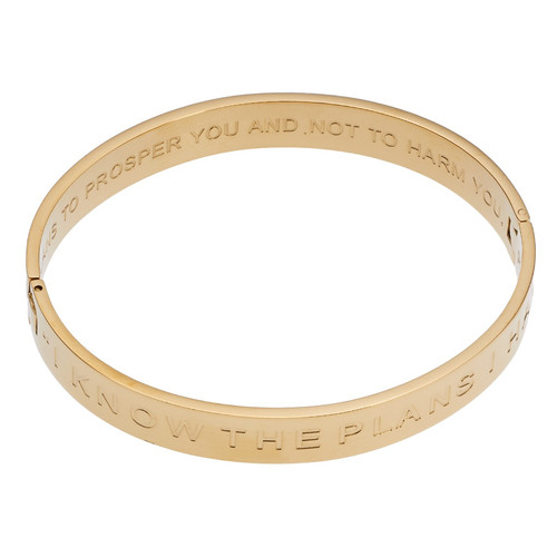 I Know The Plans Hinged Bangle Bracelet
