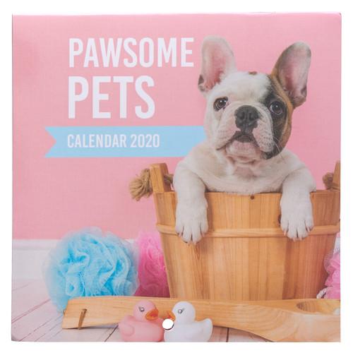 Pawsome Pets Small Wall Calendar 2020