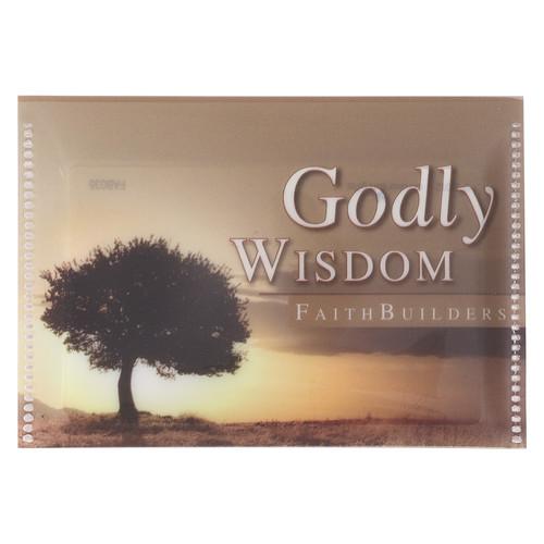 Godly Wisdom Faithbuilders