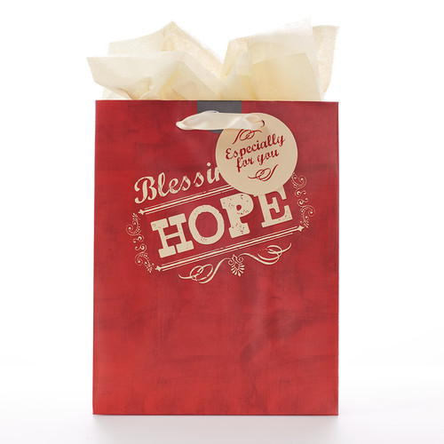 Medium Gift Bag: Retro Collection: Hope - Heb 6:19