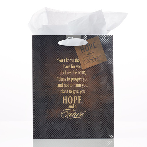 Medium Gift Bag: Journey - Jer 29:11