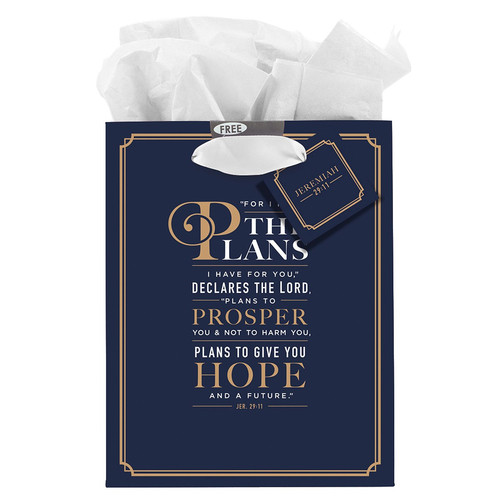 For I Know the Plans Medium Gift Bag - Jeremiah 29:11 Know the Plans - Jeremiah 29:11 Medium Gift Bag