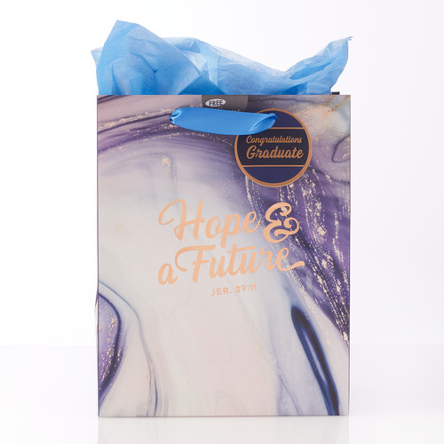 Medium Gift Bag: Hope & a Future in Blue Marble -Jeremiah 29:11