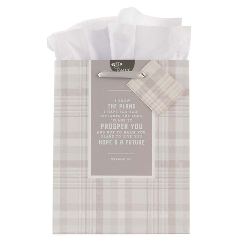 I Know the Plans Gray Plaid Medium Gift Bag - Jeremiah 29:11