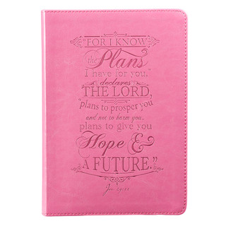 Pink: I Know the Plans - Jeremiah 29:11 Journal