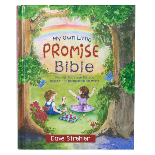 My Own Little Promise Bible