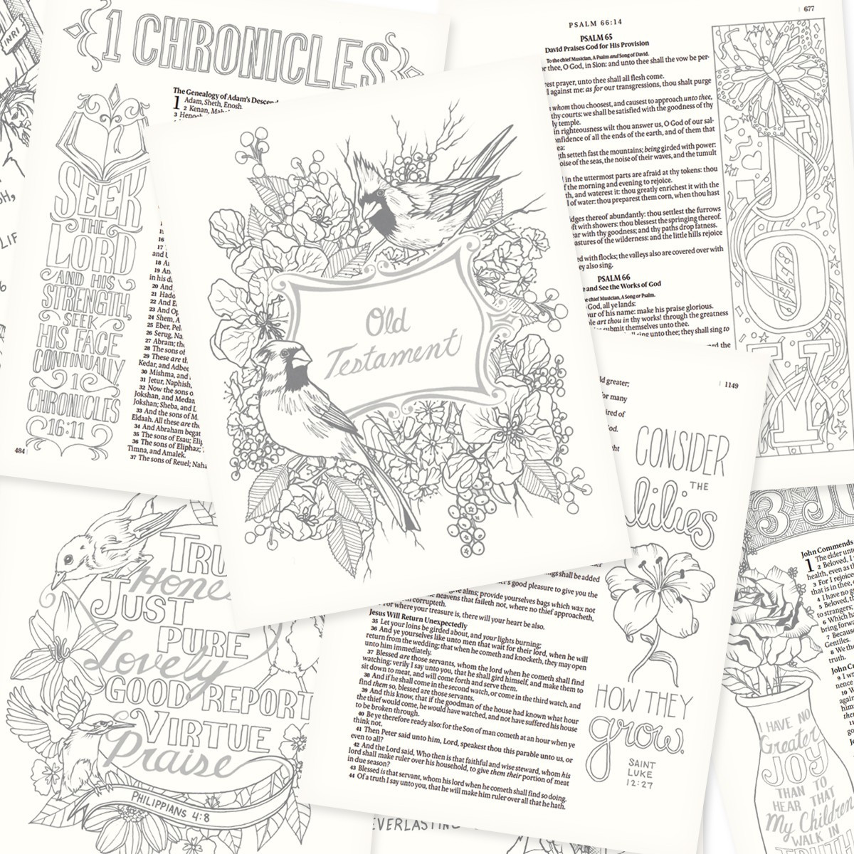 Kjv my creative bible journaling bible in brown hardcover for Kjv coloring pages