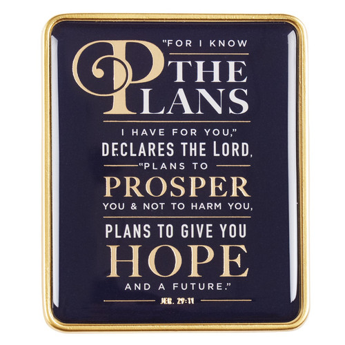 Visor Clip: For I Know the Plans - Jeremiah 29:11
